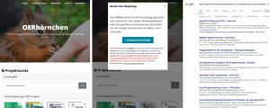 Ein Beispiel für die Suche nach Lernmaterialen zur App Programmierung